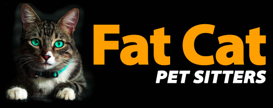 Fat Cat Pet Sitters | Services and Rates | Bartlett